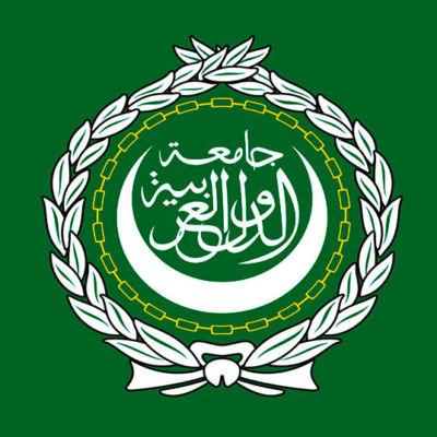 arab league flag square