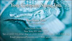 English Business Card Design Template: FIN0017