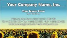 English Business Card Design Template: FLR0001