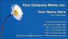 English Business Card Design Template: FLR0002