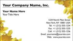 English Business Card Design Template: FLR0006