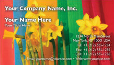 English Business Card Design Template: FLR0007