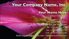 English Business Card Design Template: FLR0009