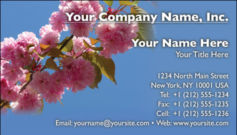 English Business Card Design Template: FLR0011